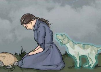 Perdre un animal de compagnie fait plus mal que ce que les gens pensent