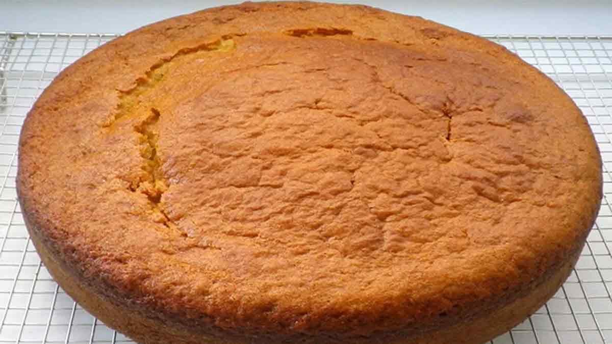 Gâteau au yaourt ultra facile et très rapide