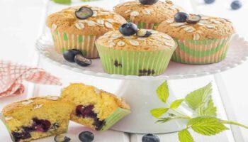muffins sans beurre aux myrtilles