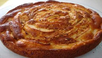 Délicieux gâteau yaourt aux pommes