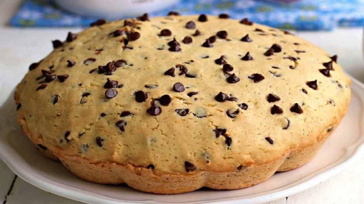 gâteau biscuit au chocolat
