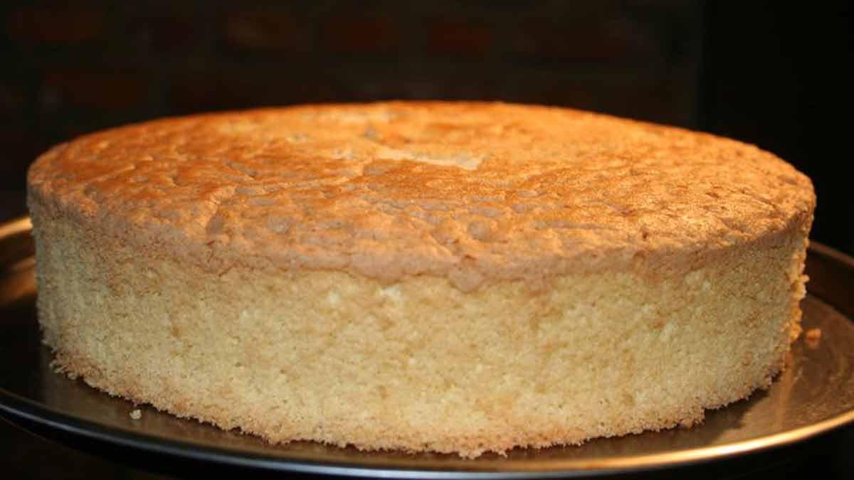 succulent gâteau moelleux de Savoie