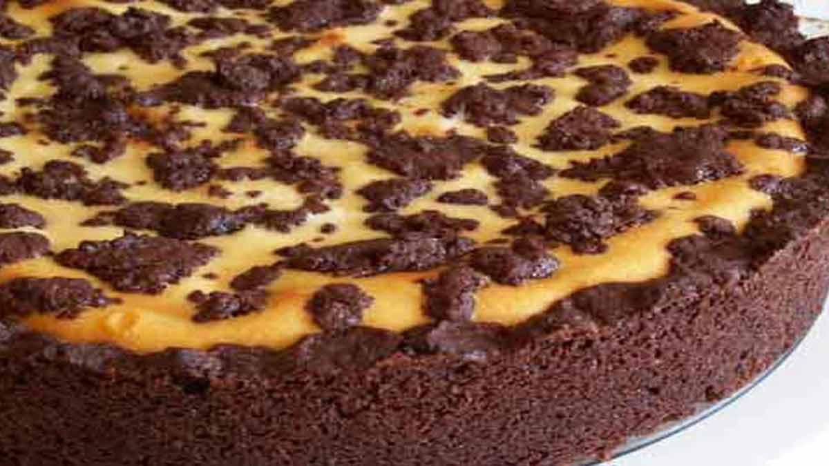 appétissant gâteau chocolat-fromage blanc