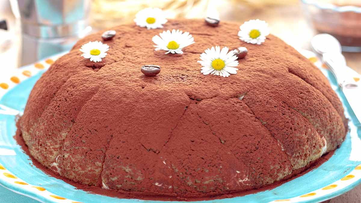 Rafraichissant gâteau sans cuisson au café